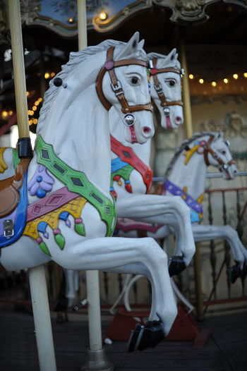 Amusement Park Arts Culture And Entertainment Carousel Creativity Horse Caroussel
