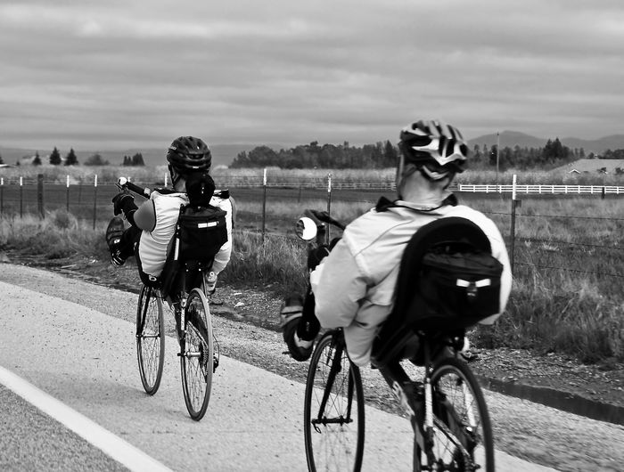 Rear view of men riding recumbent bicycles on road against sky