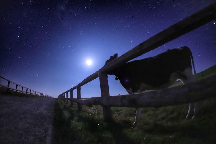 モー🐃🐂🐄眠いんだから😪 銀河鉄道の夜♪ 一目惚れんず Moonlight Landscape Astronomy Galaxy Star - Space Space Milky Way Bridge - Man Made Structure Mountain Moon Adventure Sky