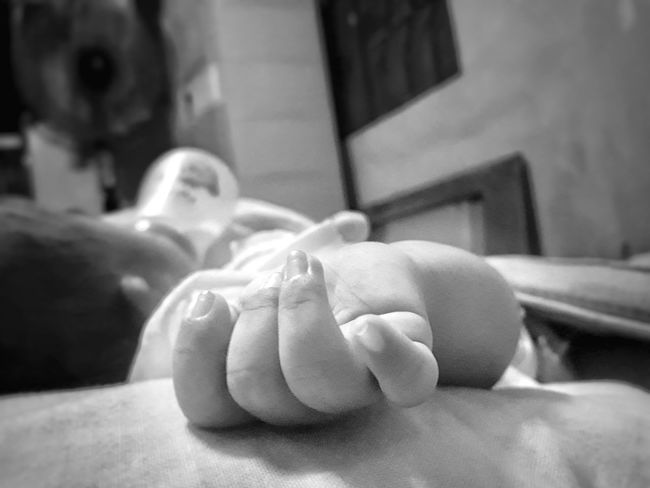 Depth Of Field Human Body Part Human Hand Baby's Hand Blur Blessing