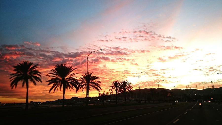 Sunset Parc De La Mar Paseo Maritimo Palma De Mallorca Palma De Mallorca