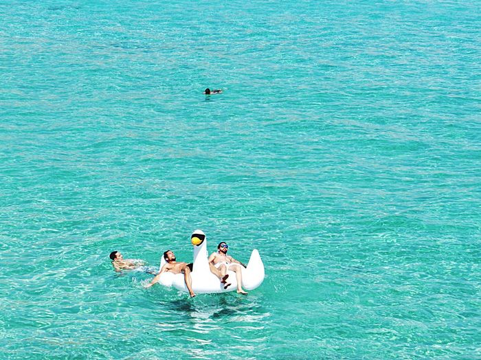 Swan Lake in Ibiza Sea Enjoying Life Mediterranean Life Mediterranean  Holidays Holiday Summer Views Summer Open Edit Blue Sea Beach Life Summertime Swan Leisure Activity Leisure Mediterranean Sea Ibiza
