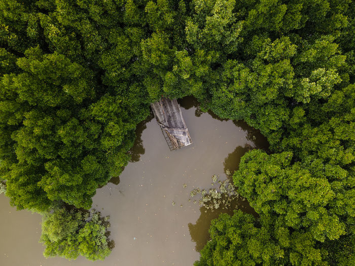 An aerial view top down of an old sunken ship