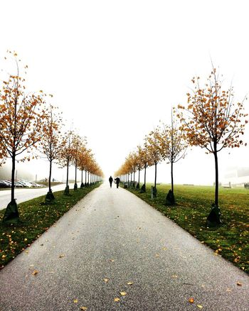 The prettiest season of the year Autumn