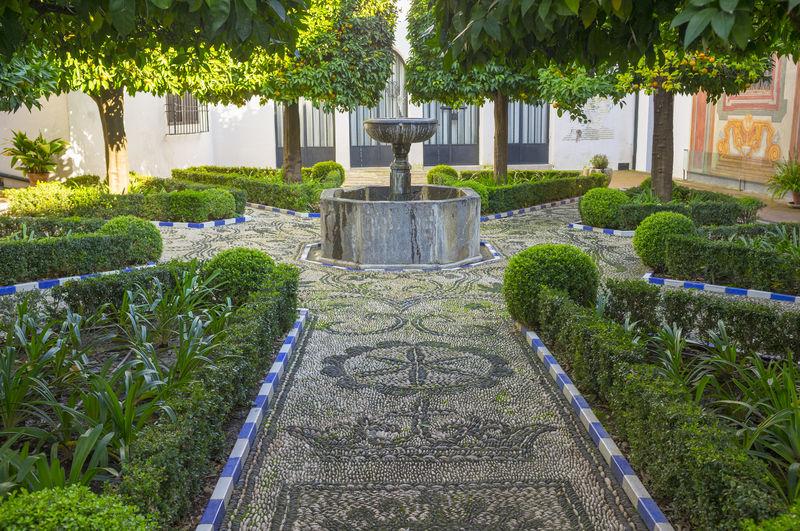 Fountain in garden