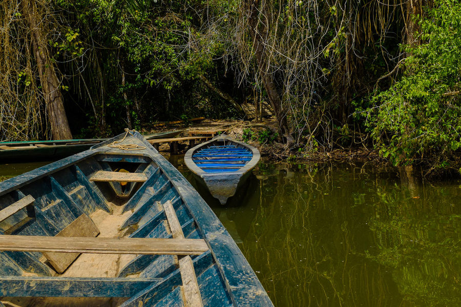 Boat Forest Idyllic Lake Lakeside Non-urban Scene Outdoors Puerto Maldonado Reflection Scenics Standing Water Tambopata Tranquil Scene Tranquility Tree Water