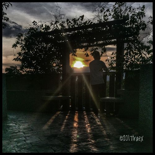 Framing the sunset Tree Two People Sunbeam Illuminated Full Length Sunlight Real People Standing Outdoors Men Sky Adults Only People Adult