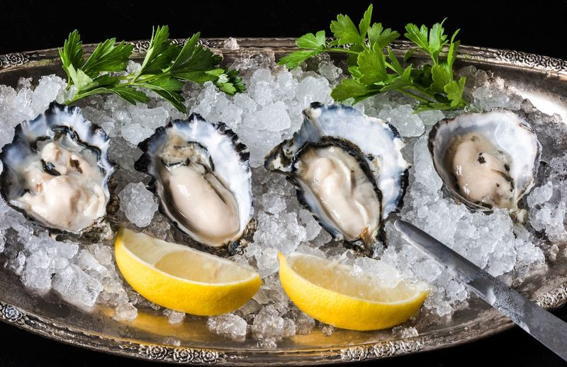 High angle view of oysters on ice with lemon and cilantro served in plate