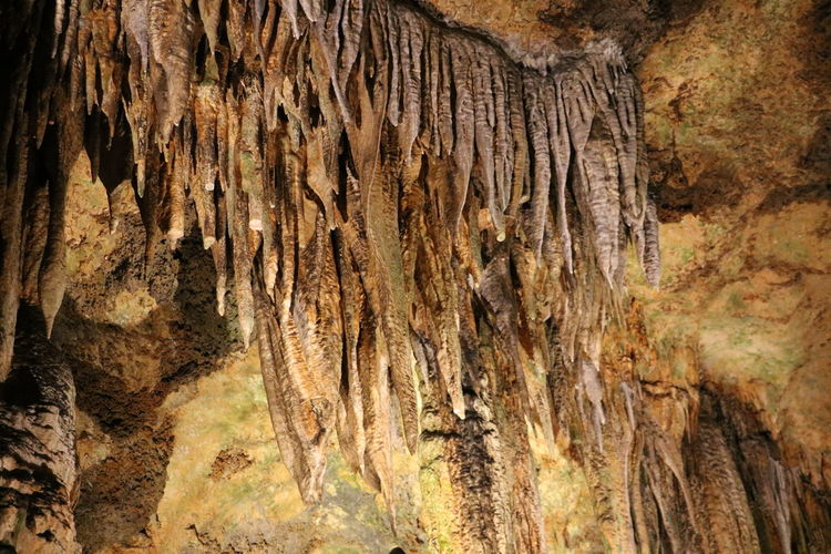 Stalagtites Backgrounds Cave Close-up Day Dungeon Full Frame Luray Luray Caverns Nature No People Outdoors Stalagmites Stalagtites Textured
