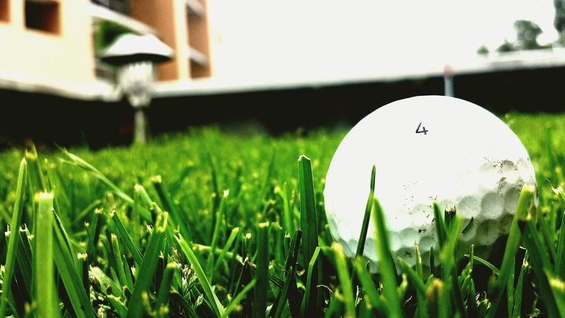 Golfing Hole In One! The Grass Is Green Outdoors Golfball Grass Nature Sports