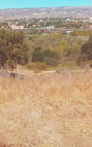 Nice view of rural moorpark EyeEmNewHere Southern California Vcoutdoors Moorpark Nature Foothills