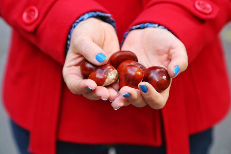 Midsection of woman holding chestnuts outdoors