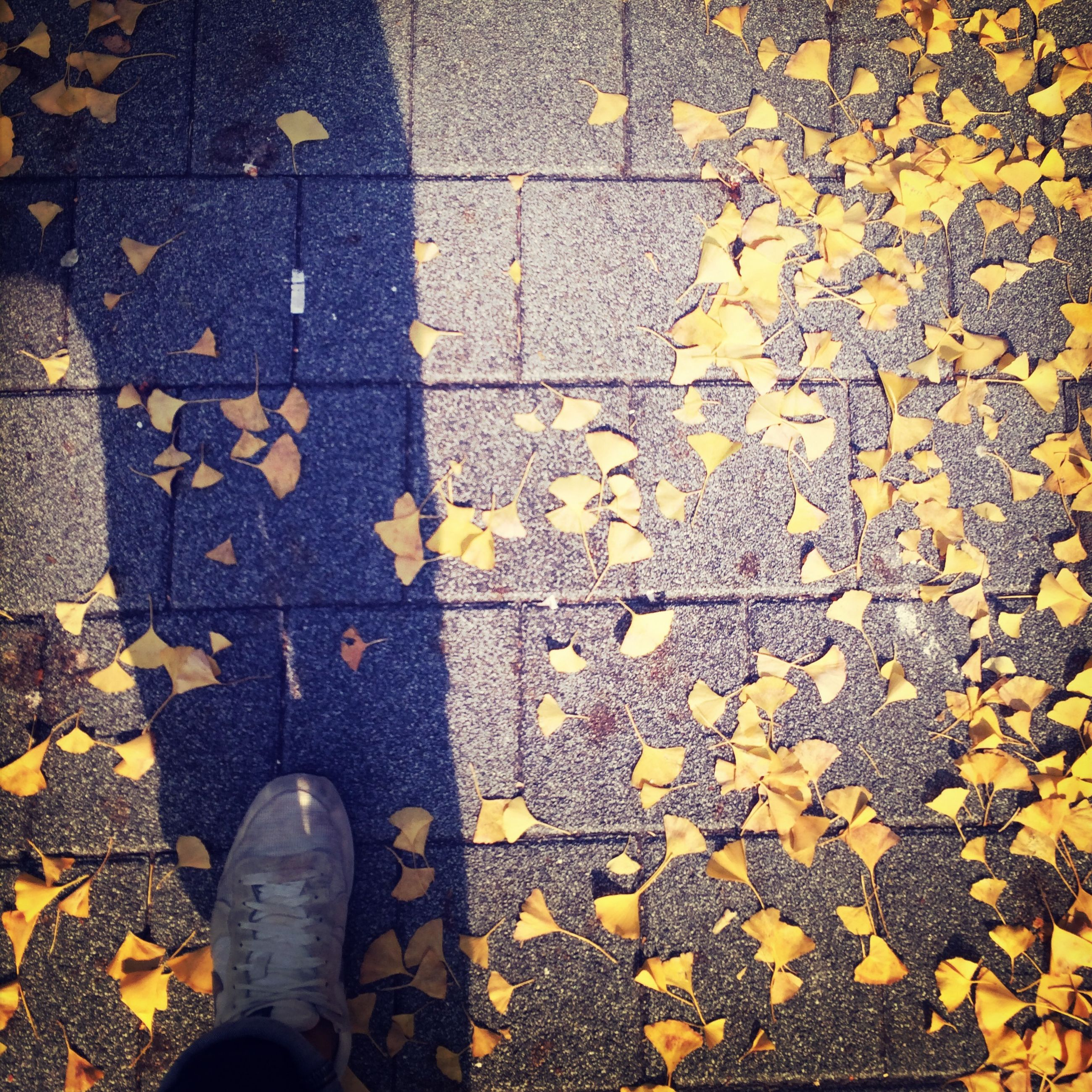 low section, person, shoe, personal perspective, standing, high angle view, yellow, lifestyles, human foot, footwear, unrecognizable person, street, men, directly above, autumn, cobblestone, leisure activity