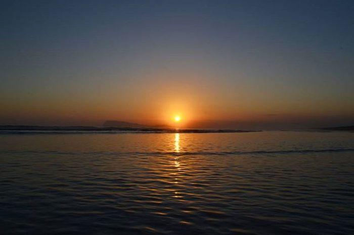 Matronaku di Taman Nasional Alas Purwo Tamannasionalalaspurwo Alaspurwonationalpark Alaspurwobanyuwangi Alaspurwo Sunset Banyuwangi Explorebanyuwangi Penikmatkaryatuhan Wisatabanyuwangi