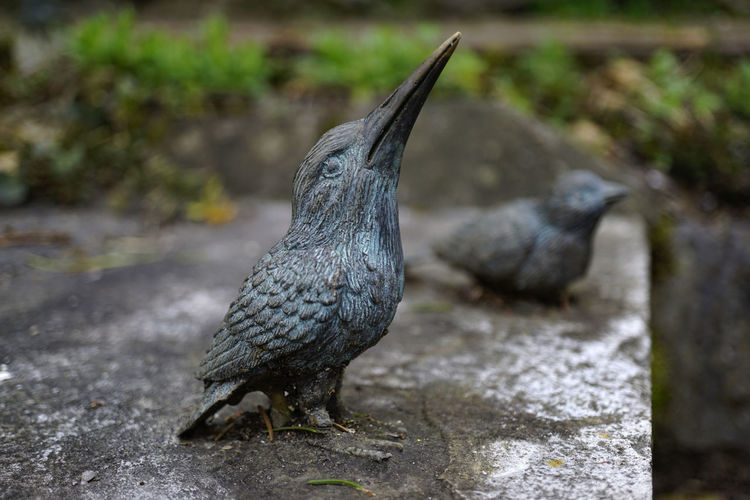 Two little stone bird figures on a stone wall