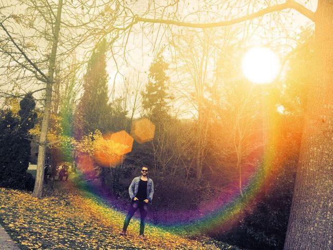Nature Forest Turkey Türkiye Istanbul Sarıyer Man Sun Rainbow Atatürk Arboretumu