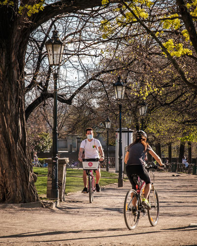 People riding bicycle against trees