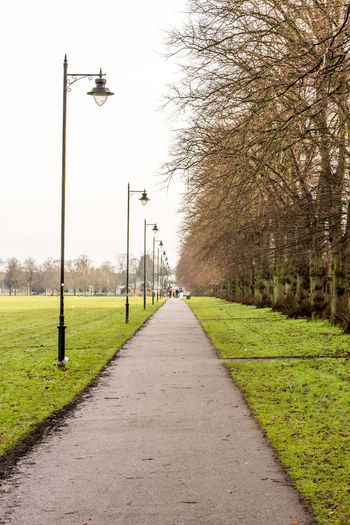 Straight avenue in park with lamp posts, path way, England Empty Field Footpath Lamps LINE Park Pattern Perspective Straight Walk Water