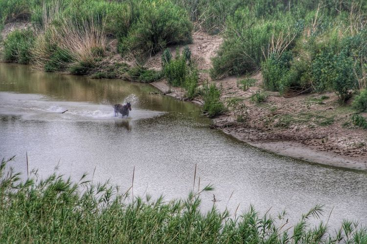 U.S.-Mexico border (2) Bridgesnotwalls Landscape_photography Landscape_Collection Landscape Tadaa Community