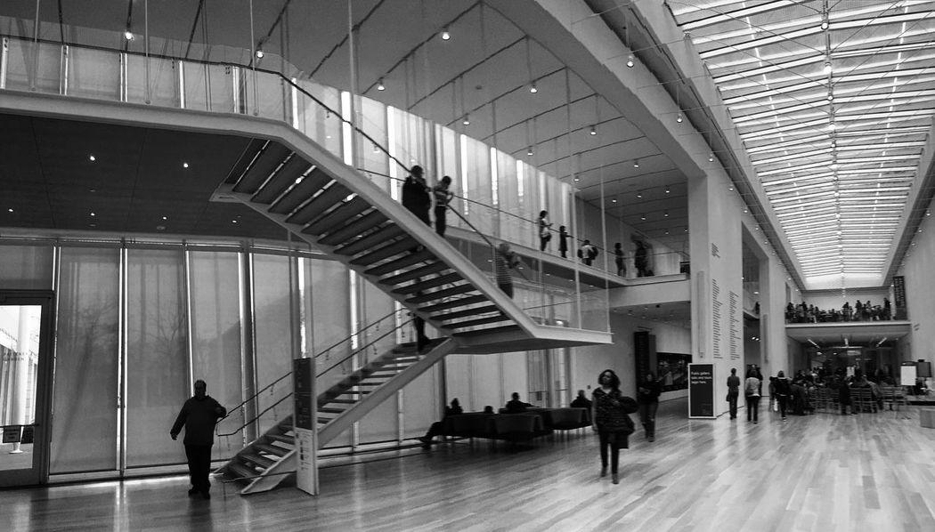 Architecture Chicago Chicago Architecture Chicago Illinois Chicago Downtown Architecture Design Renzo Piano Renzopianobuildingworkshop United States Art Artinstituteofchicago Artinstitute Illinois