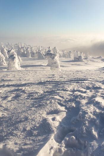 Frozen landscape against sky
