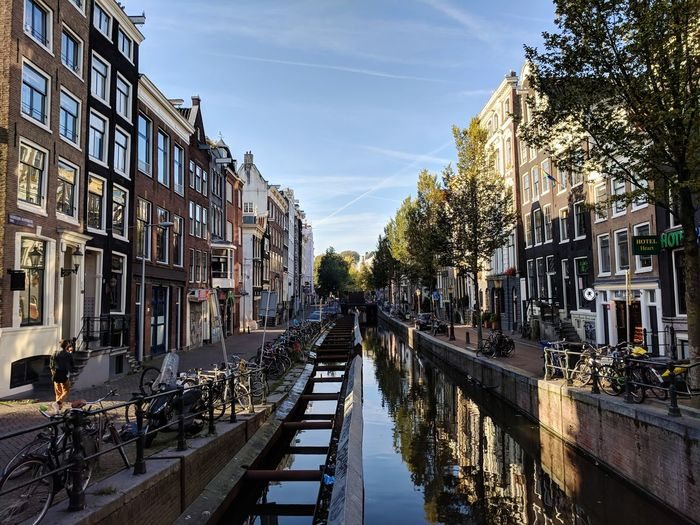Amsterdam being splendid. Canal City Tree Politics And Government Water Incidental People Sky Architecture Building Exterior vanishing point Arch Bridge Diminishing Perspective The Way Forward Pathway