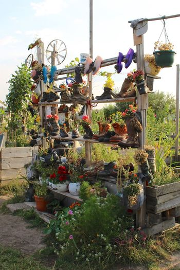 Just some plants in some shoes in Berlin Abundance Art ArtWork Creativity Decoration Flowers,Plants & Garden Front Or Back Yard Garden Gardening Green Growing Growing Growth Growth Plant Plant Plants Potted Plant Summer Summertime Sunny Day
