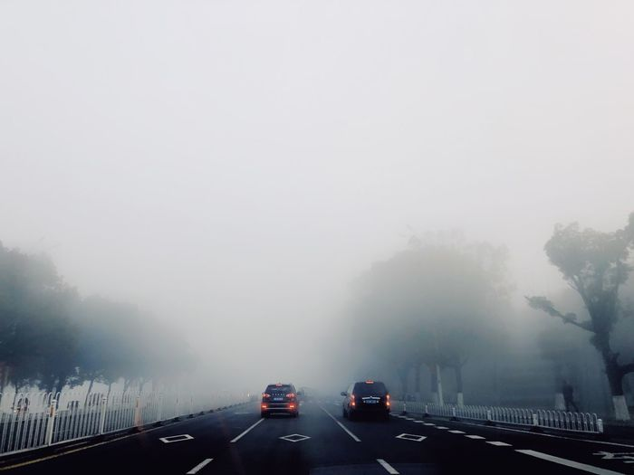 Fog Fog 雾 Transportation Motor Vehicle Car Mode Of Transportation Land Vehicle Road Tree No People Day Travel Wet Traffic Nature Sky Copy Space on the move The Way Forward Outdoors Plant