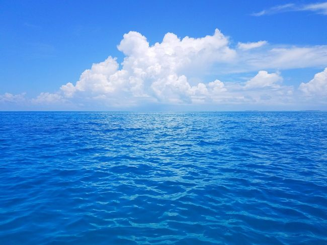 Beautiful blue ocean and clouds near Maldives Maldives Blue Ocean Clouds White Peaceful Relax Visit Blue Sea Cloud - Sky Sky Scenics Backgrounds Nature Water Beauty In Nature No People Landscape Tranquility Outdoors Summer Day Horizon Beauty Horizon Over Water