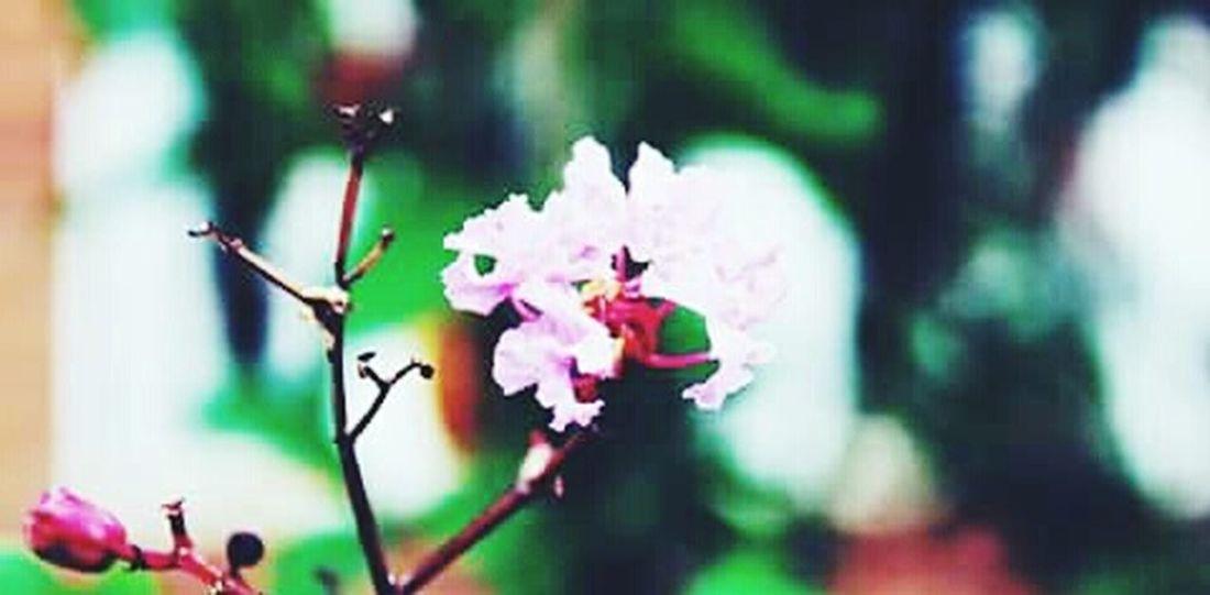 Coisa De Deus Desenho De Deus Natureza Perfeita♡♥