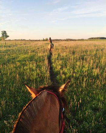 Aunque no murió el amor, mi corazón anda de luto. Only Women Cloud - Sky Day Young Adult Machado Travelling Argentina Sunset Atardeceresporelmundo Horse Horseriding Happiness Memories
