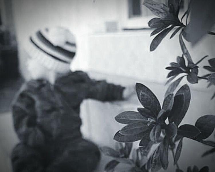 Naturalidade Life Profundity Beautiful Black And White Winter Close-up EyeEmNewHere