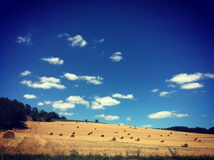 Photography Photo Iphonephotography Photooftheday Photographer France Landscape Bleu Sky Lot Et Garonne