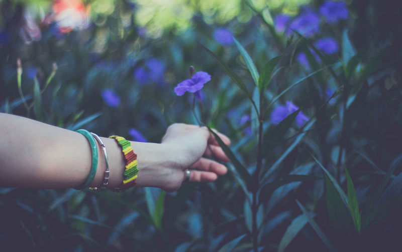 Adult Close-up Day Flower Focus On Foreground Human Body Part Human Hand Nature One Person Outdoors People Real People Women First Eyeem Photo