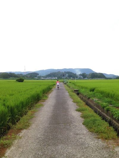 Rear View Of Woman Riding Bicycle On Country Road