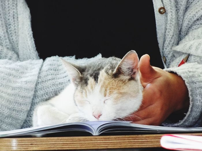 Midsection of person with cat sleeping on book