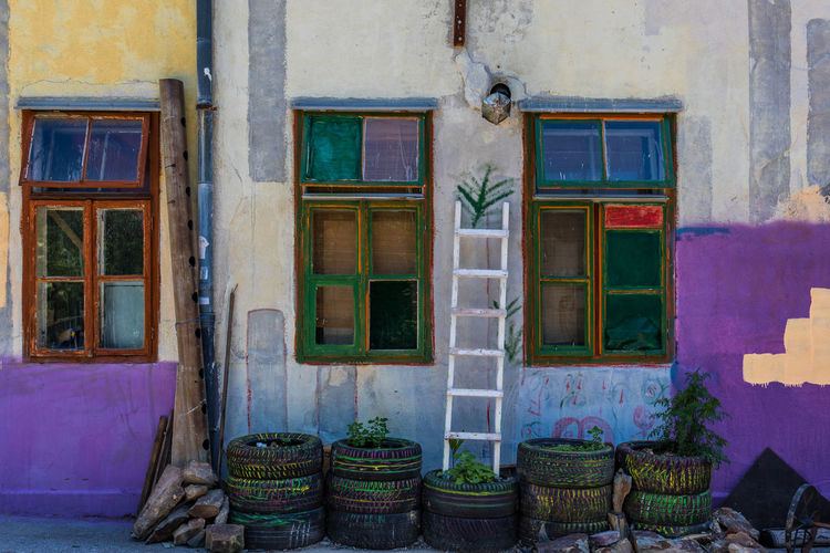 Plants in tires by ladder against house