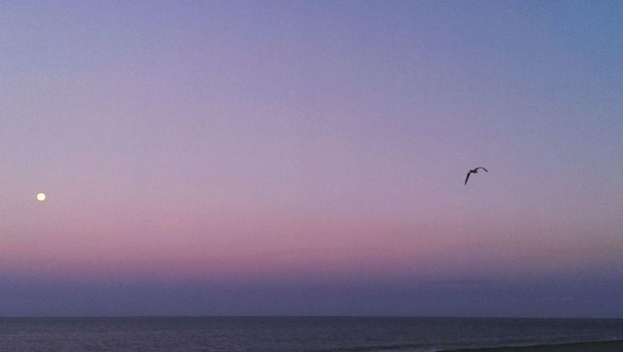 Sunset,moon, beach, Spain
