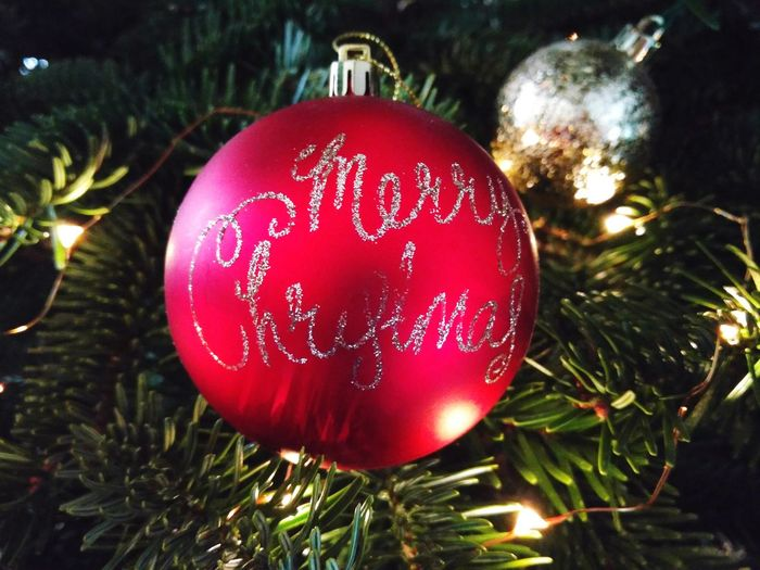 Close-up of christmas decorations hanging on tree