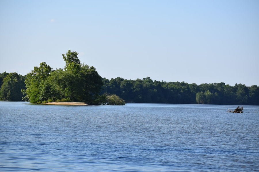 Alabama Alabama River Beauty In Nature Clear Sky Nature Outdoors Scenics Tree Water Waterfront Alabama River At Pintlala Creek Alabama Outdoors