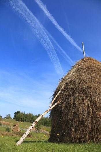 Hay bales on field against blue sky