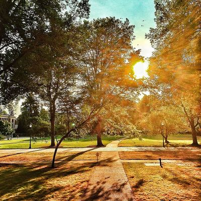 OSU campus. Sunny OSU Oregonstateuniversity Corvallis oregon