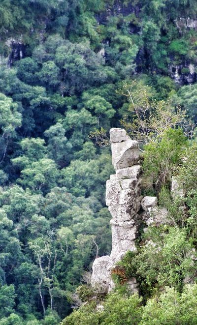 The Cyborg Landscapes Of Brasil NEM Landscapes NEM Mind Awesome_nature_shots