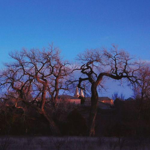 Blue Tree Sky Silhouette Rural Scene NewMexicoTRUE Newmexicoskys Newmexicophotography Newmexicoskies Be. Ready.