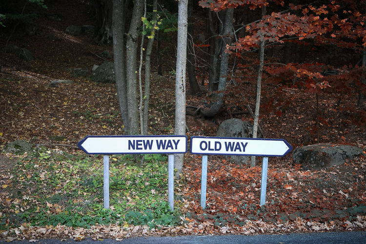 Choice Decisions Determination Goals Life New Path Right Now Road Sign Changes Different Different Perspective Direction Forest Good And Evil Mistakes  Old Personal Perspective Results Road Sign Same  Take Control Way Wrong