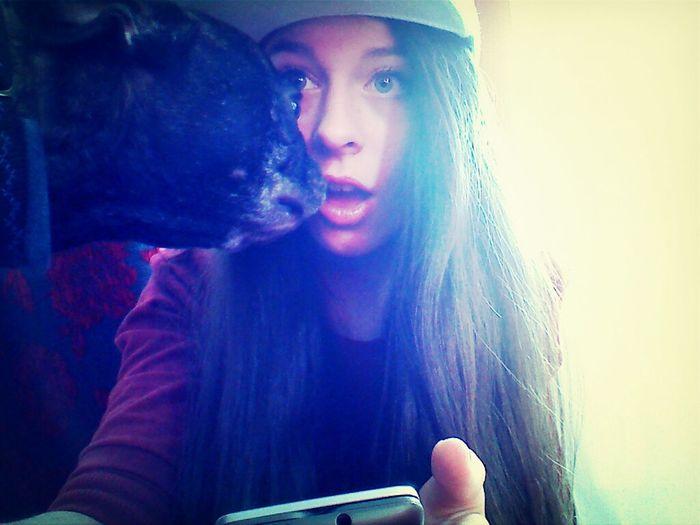 Having Fun Dog Smile Selfie Bulldog Doris