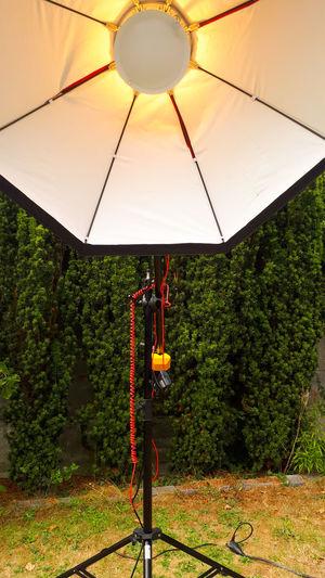 Man standing by illuminated lighting equipment on tree