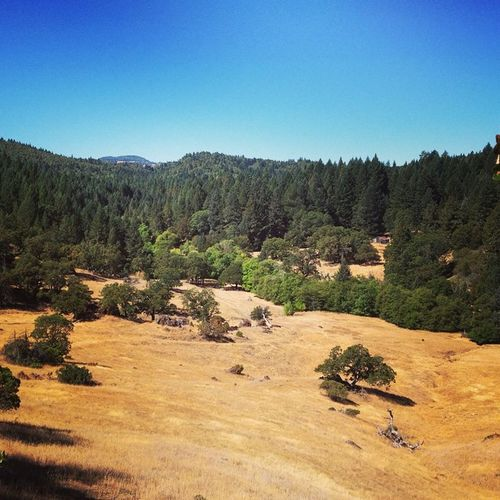 Californian dry landscape California Ohanaranch