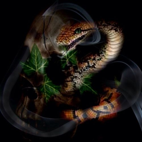 Slither Darkart Dark Art The Black Lens Fantasy Edits