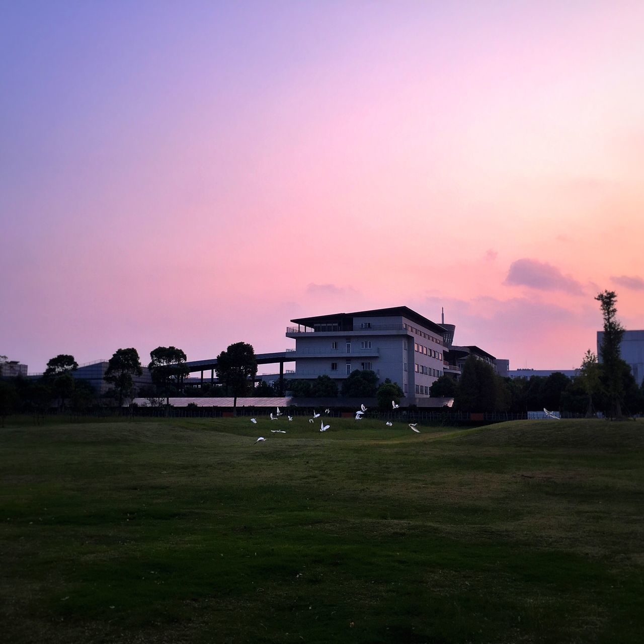 grass, sunset, built structure, field, building exterior, architecture, house, nature, sky, no people, outdoors, tree, silhouette, landscape, beauty in nature, playing field, scenics, golf course, day